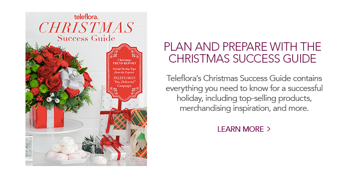 Christmas Success Guide